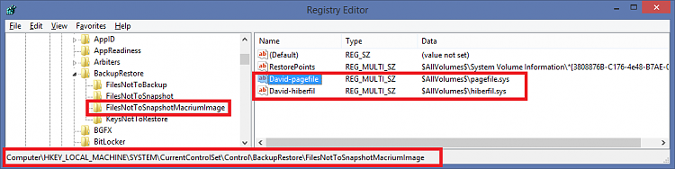 Imaging via MR Rescue Media not skipping pagefile & hiberfil-macriumexcludefiles.png