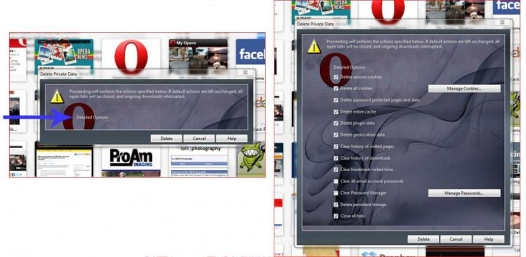 Best Web Browser?-delete-history.jpg