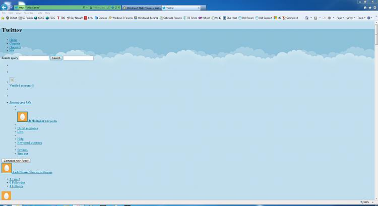 Proper Twitter Page Display?-twitter.jpg