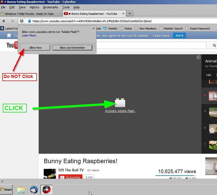 Beware of latest Adobe Flash Player Update.-click-play.jpg