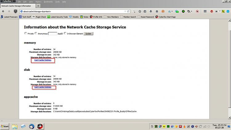 Firefox 33 - Startup Issue-cyberfox-cache.jpg