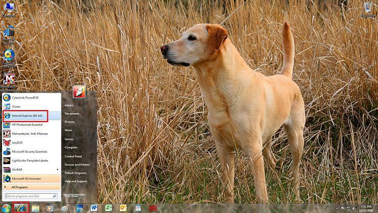 32 bit Internet Explorer Help-browser.jpg