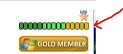 Reputation and Badges [4]-5th_gold_buffalo_chip_10_20_2010.jpg