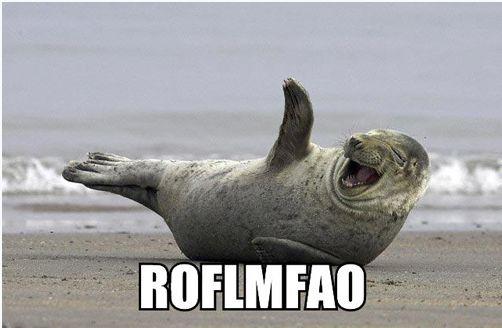 Restore Point: Description-roflmfao.jpg
