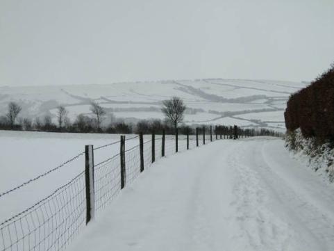 Today [6]-snow.jpg