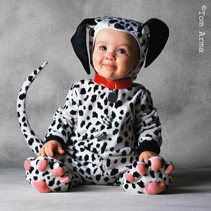 show us your dog-halloween-baby-13.jpg