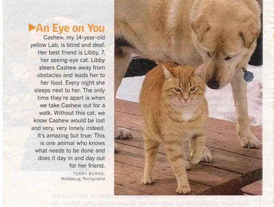 show us your dog-att28742.jpg