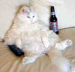 Name:  lazy_cat.jpg Views: 30 Size:  17.8 KB