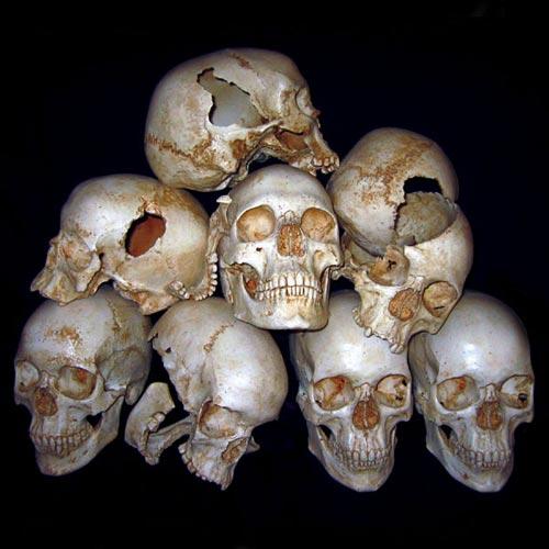 Name:  human_skulls_group1.jpg Views: 16 Size:  40.8 KB