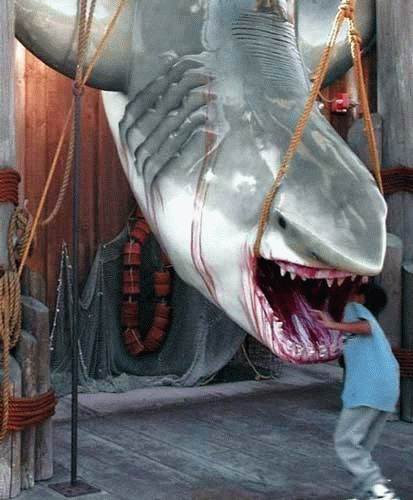 Funny and Geeky Cool Pics [2]-panais-shark.jpg