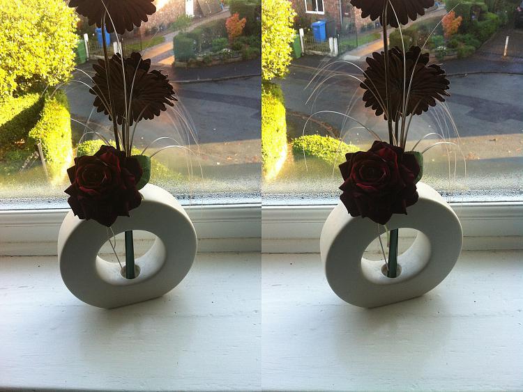 -stereoscopic-window-flower.jpg