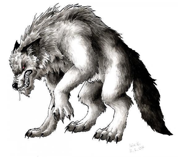 Reputation and Badges [6]-wolves-wolves-8914549-576-508.jpg