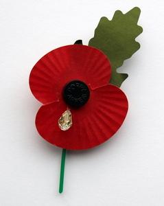 In Memoriam-wootton-bassett-remembrance-poppies-get-crystal-tears.jpg