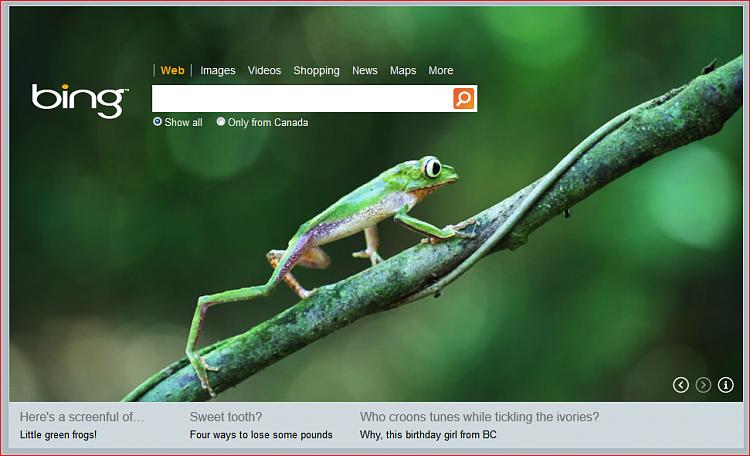 Take a look at Bing's theme today 16 nov 2011-bing.png