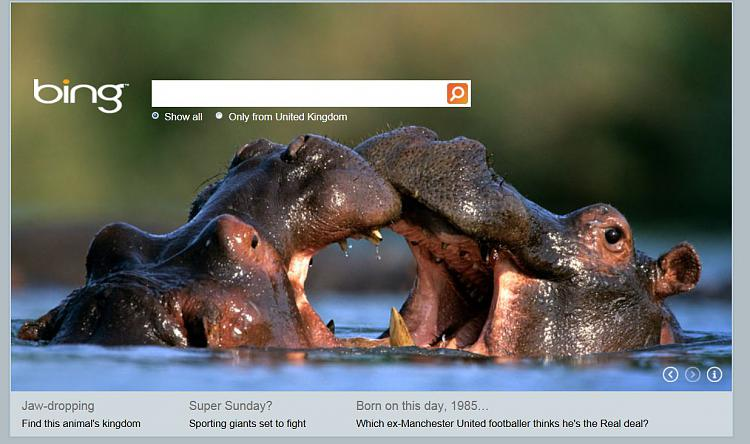Northern Lights - Today on Bing - Tues. Jan. 31st-bing.jpg