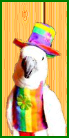 Happy Birthday PooMan UK-hb.png
