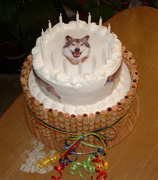 Name:  wolf_cake_2_small.jpeg Views: 39 Size:  52.7 KB