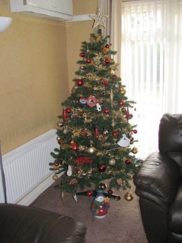 Show us your tree!-christmas-tree.jpg