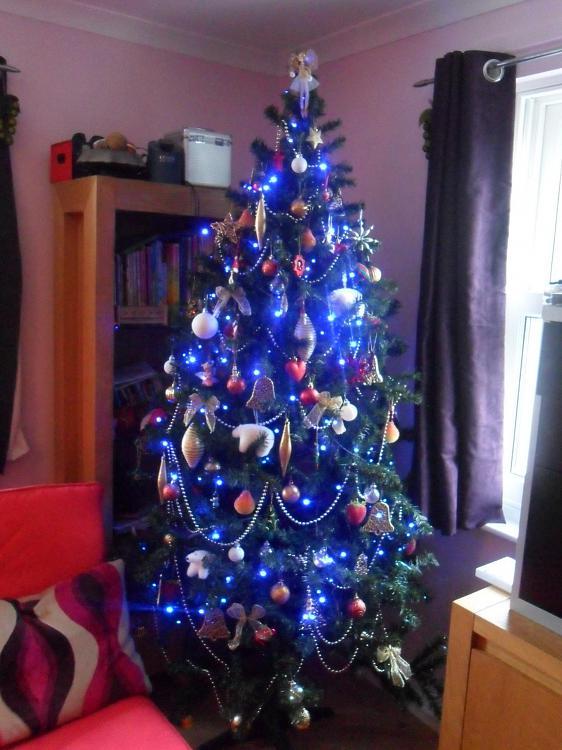 Show us your tree!-sam_0909.jpg