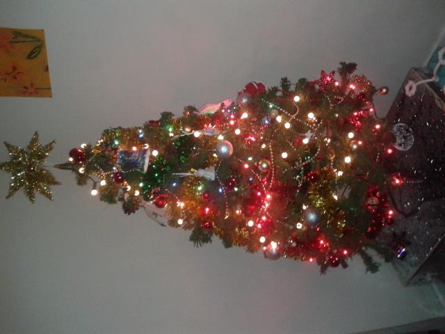 Show us your tree!-20121212_185147.jpg
