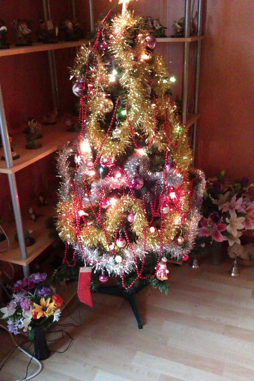 Show us your tree!-2012-12-12-14.55.03.jpg