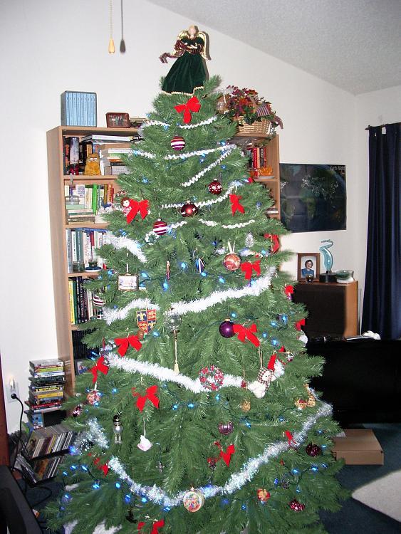 Show us your tree!-imgp2161.jpg
