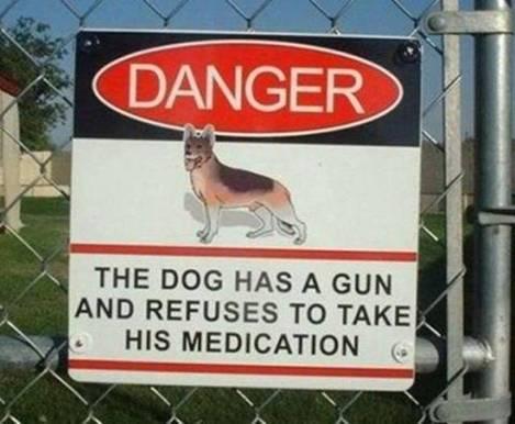 Name:  Dog with gun.png Views: 61 Size:  303.2 KB