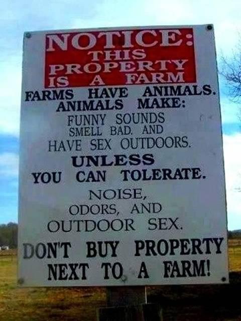 Name:  The Farm.png Views: 58 Size:  466.5 KB