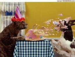 Happy Birthday Shawn-untitled.png