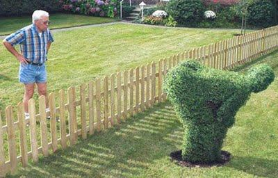 Funny and Geeky Cool Pics [3]-bush.jpg