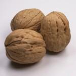 Teeth are very expensive!!!!!-walnuts.jpg