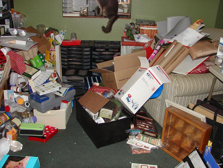 I Spy-cat-messed-up-craft-room.jpg