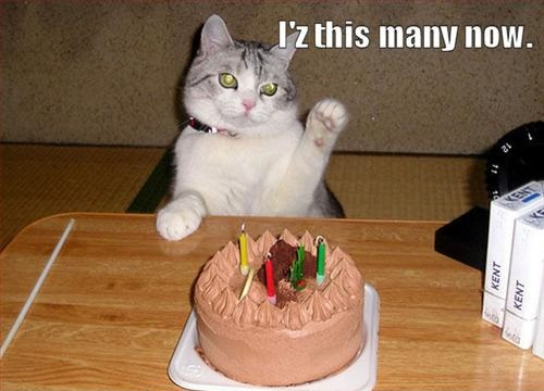 Happy 5th Birthday, Joan-cat.jpg
