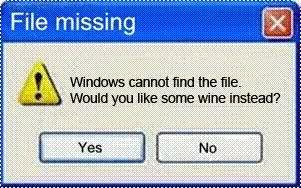 Missing File?-windows_winerrormsg.jpg