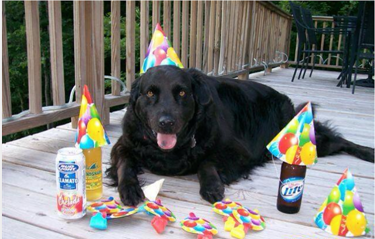 Happy Birthday A Guy-happy-b-d.png