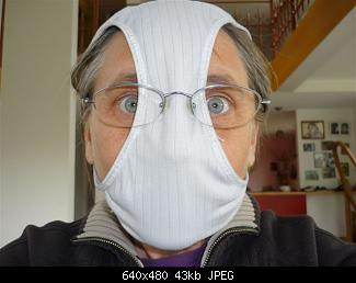 Emergency Swine Flu Mask-swine_flu_mask.jpg