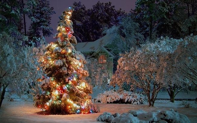 Christmas desktops-christmas2011wallpapercollection11-1-.jpg