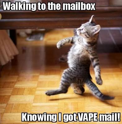 Any Vapers?-walking-mailbox.jpg