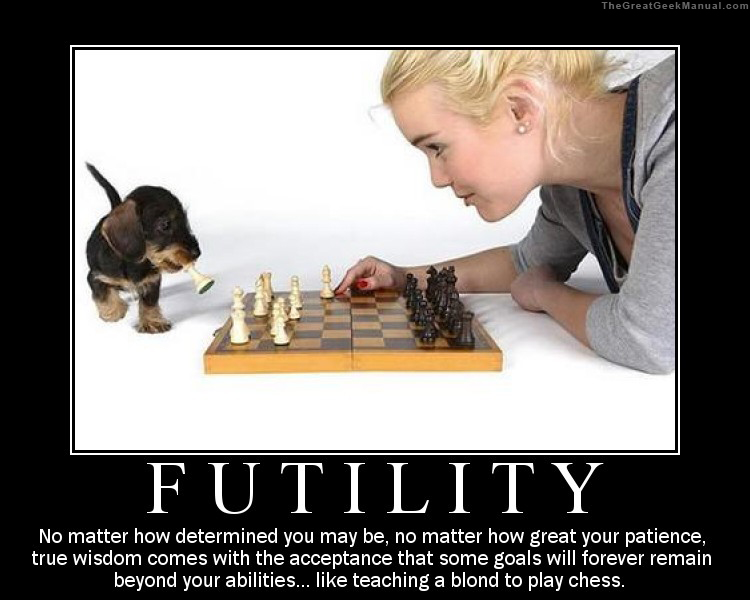 Motivation of the humourous-motivational-poster-futility-wisdom.jpg