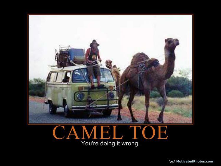 Motivation of the humourous-633593555235747657-cameltoe.jpg