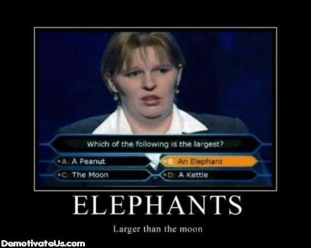 Motivation of the humourous-elephants-larger-moon-demotivational-poster.jpg