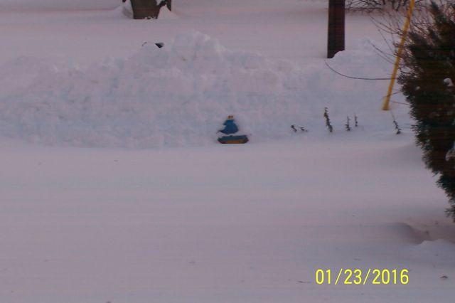 Snowmageddon: Jan 23rd 2016, PA - DE - VA - MD - NJ - NY - MA - CT- RI-1_24_16-blizzard-2016_06.jpeg