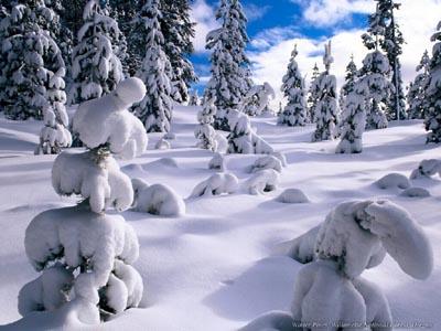 Mods...mods...mods...-snowscenes.jpg