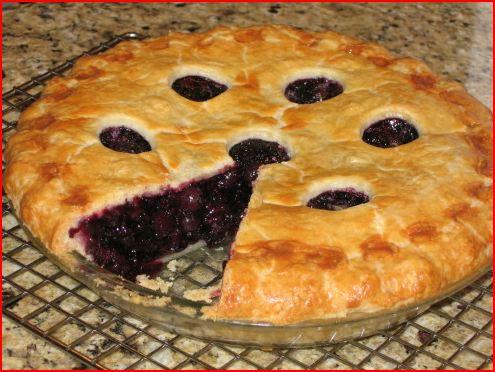 My 300th post!!-blueberry-pie.jpg