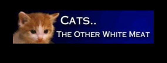 Cat stew lover!-cats.jpg