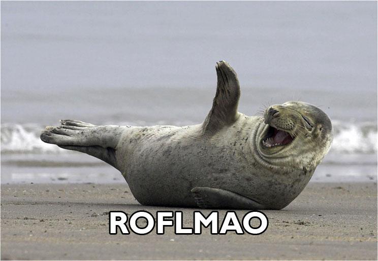 Today [2]-roflmao1.jpg