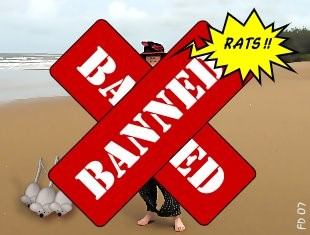 Banned!-ban.jpg