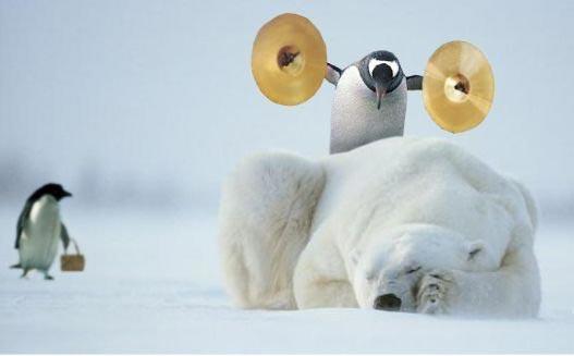 Reputation and Badges [2]-penguin-bear.jpg