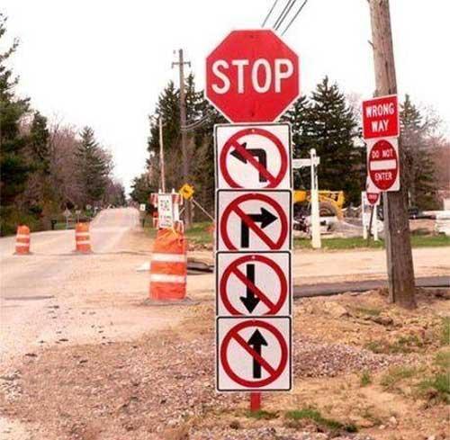 Crazy Signs-stop.jpg