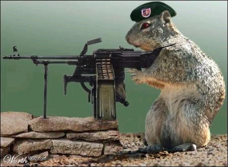 Panda-monium!-squirrel_with_machine_gun.jpg